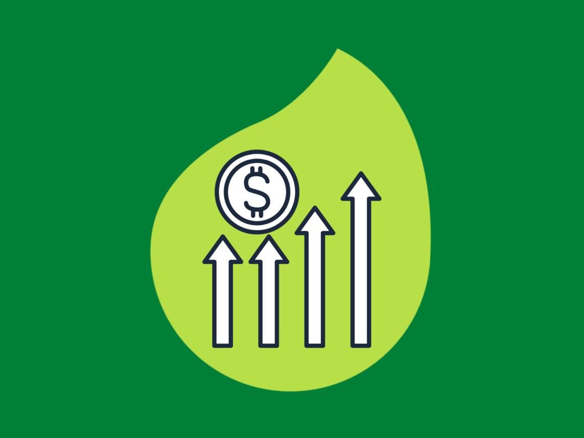 folha-com-um-grafico-dentro-em-um-fundo-verde-entenda-o-que-é-roi-de-uma-vez-por-todas